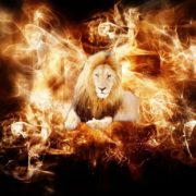 flaming-lion